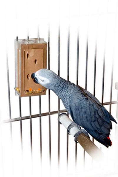Kreativ futtomat starterset l für papageien treat