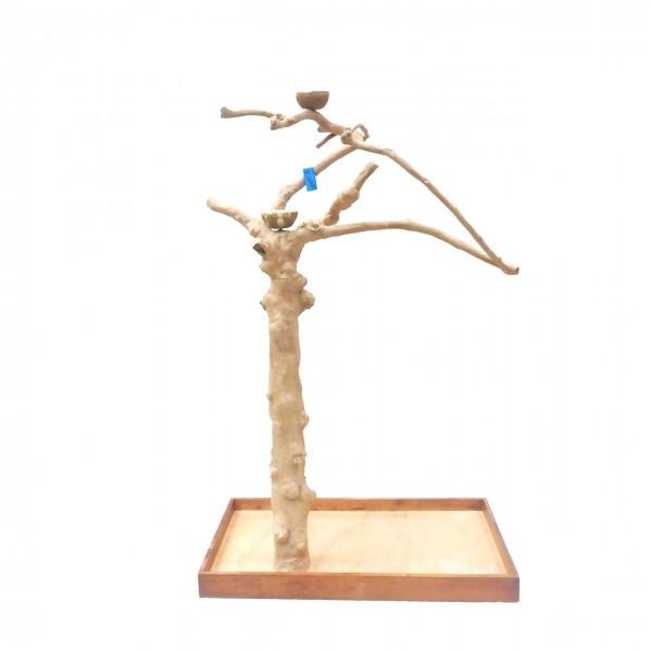Java Tree Freisitz aus Kaffeeholz - Large für Papageien, Aras und Kakadus BM50147