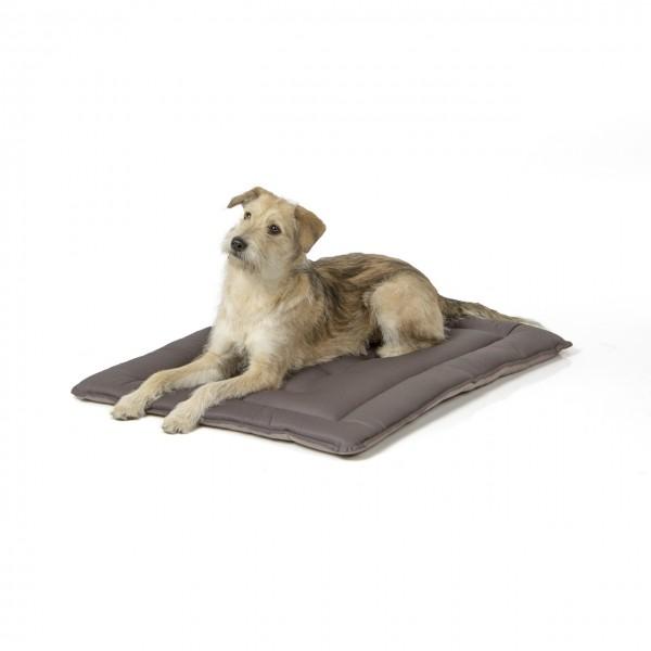 gepolsterte Wendedecke 90 x 70 cm, hellgrau/dunkelgrau bei 95°C waschbar für Hunde