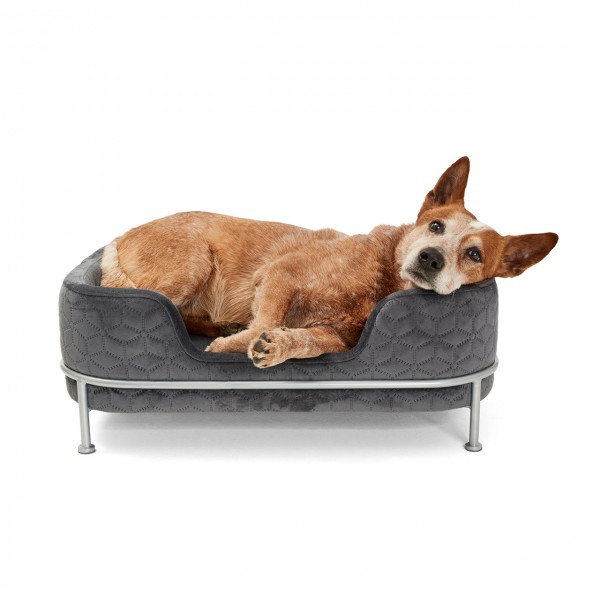 Hundebett Windsor | Grau | Hundekissen, Schlafplatz für Hunde