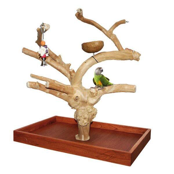 Java Tree Tischfreisitz aus Kaffeeholz für Großsittiche & Papageien