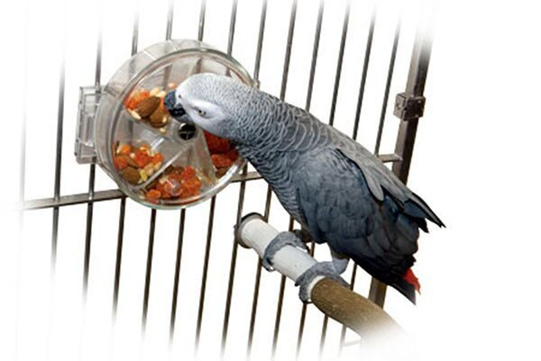 """Versteckspielzeug """"Treat Wheel""""  für Papageien und Sittiche für Foraging"""