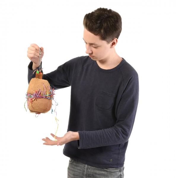 Coconut Treatholder - das natürliche Foraging Spielzeug für Papageien