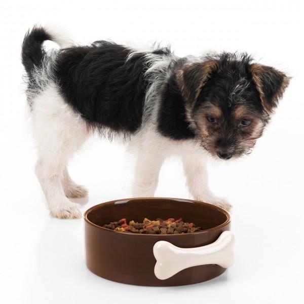 Keramiknapf Hund braun