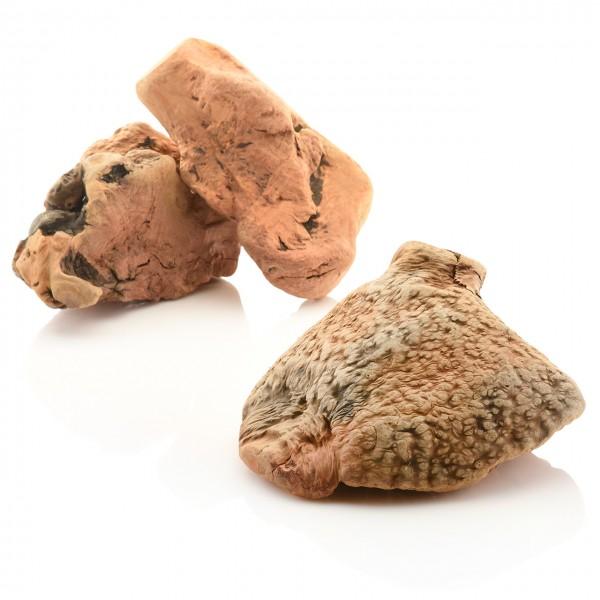 """Larsson Heidebaum Hunde Snack Wurzel """"Dolle Knolle"""" / Kauwurzel Größe XL 700 - 1000 gr"""