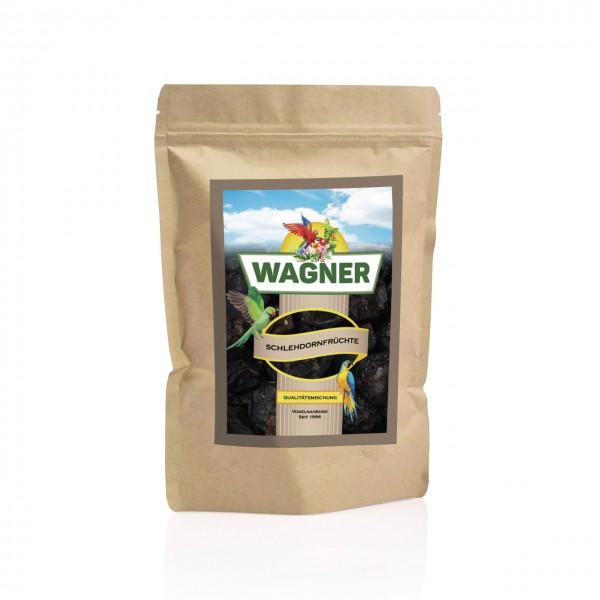 Schlehdornfrüchte 150g | Leckerchen für Vögel