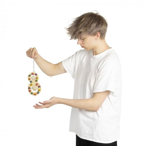 Die bunte 8 - Geschicklichkeitsspielzeug für Papageien & Sittiche