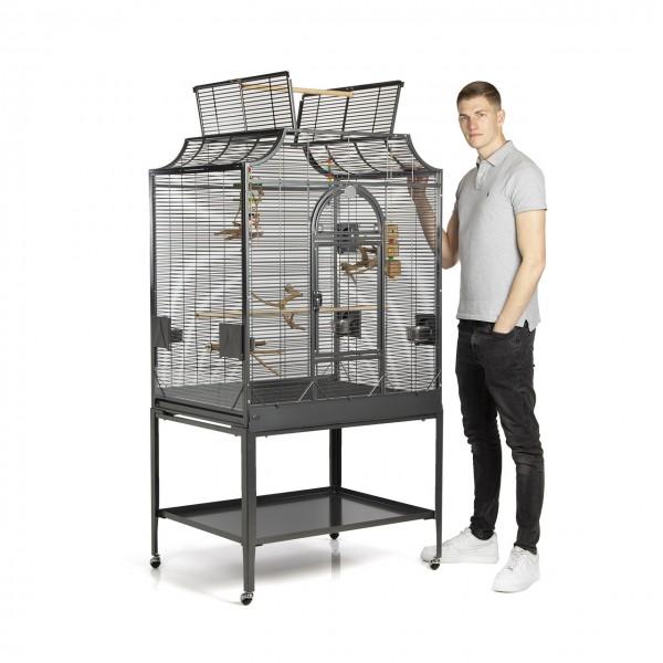 Vogelkäfig Madeira III - Antik von Montana Cages