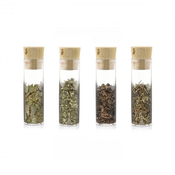 Probierset (Katzenminze, Baldrian, Eukalyptusblätter und Gamanderkraut) 3 verschiedene Katzenkräuter