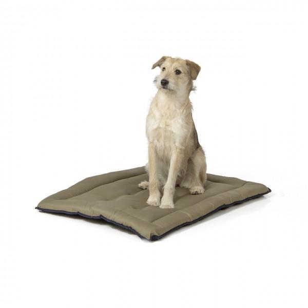 gepolsterte Wendedecke 90 x 70 cm, dunkelblau/oliv bei 95°C waschbar für Hunde