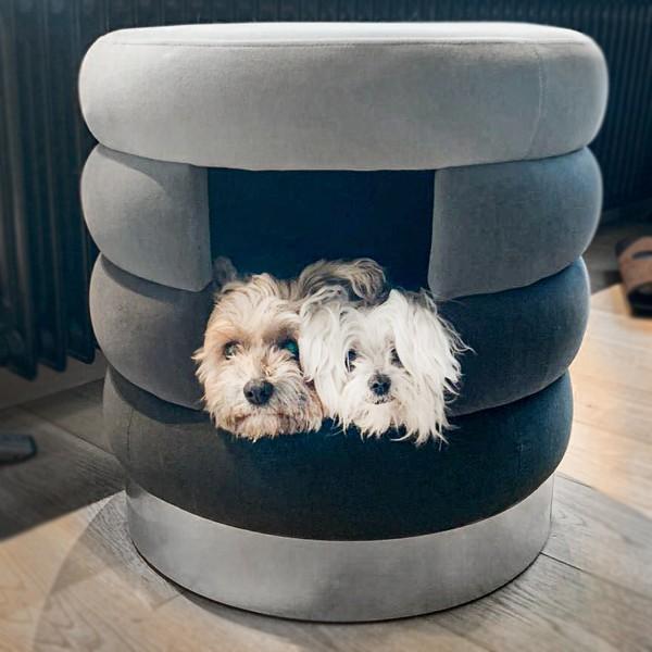Hundehöhle Choupette | Grau | Hundebett, Kuschelhöhle und Hocker für Hunde