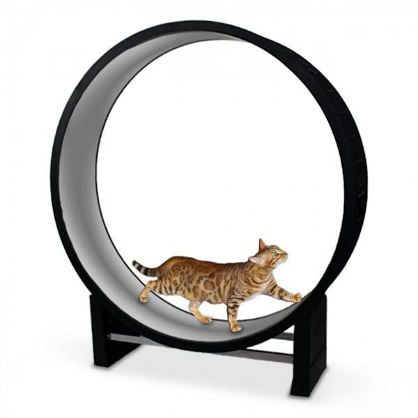 Katzenlaufrad Cat in Motion black / hellgrau