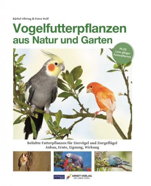 Vogelfutterpflanzen aus Natur und Garten