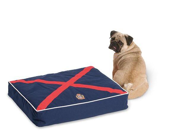 Hundekissen BRISTOL - SMALL blau rot