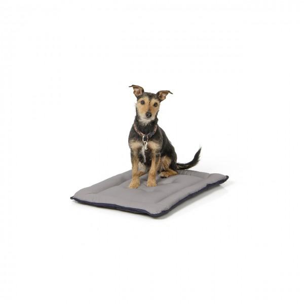 gepolsterte Wendedecke 60 x 45 cm, schwarz/grau bei 95°C waschbar für Hunde